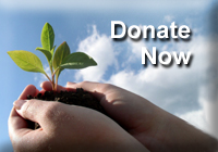 Make a donation to ALC